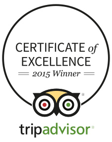 Certificate of Excelence 2015